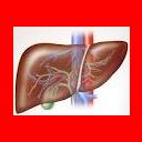 Wirusowe zapalenie wątroby